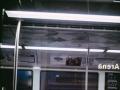 Проезд в общественном транспорте может стать бесплатным
