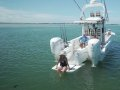Solace 345: краткий обзор лодки с инновационной компоновкой